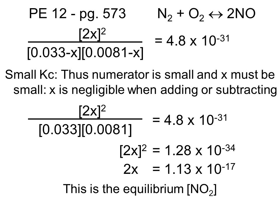 This is the equilibrium [NO2]